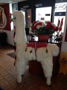 Una llama de alpaca como otra decoración del restaurante
